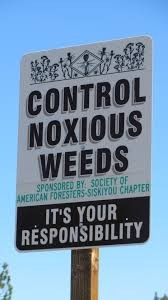 Noxious weeds