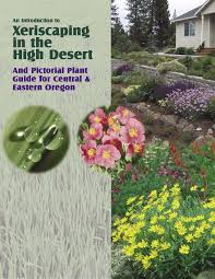 Xeriscaping in the high desert